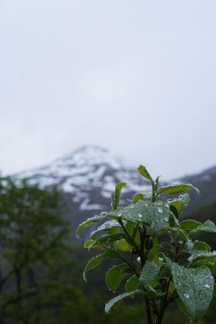 Snow Mountain Norway